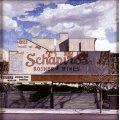 Schapiro 1996