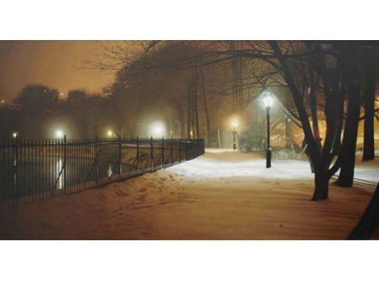 Central Park Nocturne